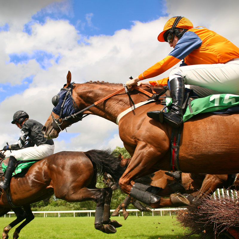 Group transport for all race days at Chester Racecourse, we're the perfect transport solution for groups travelling from Lancaster and the surrounding Lancashire and Cumbria area