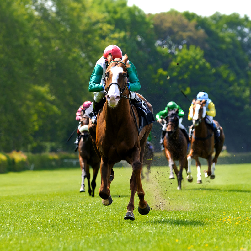 Group transport for all race days at Haydock, we're the perfect transport solution for groups travelling from Lancaster and the surrounding Lancashire and Cumbria area